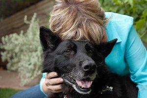 Lady Hugging Shepherd Dog