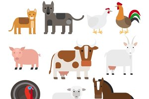 Domestic animal flat vector