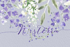 Wisteria wedding watercolor clipart