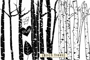 Birch Tree ClipArt + Photoshop Brush
