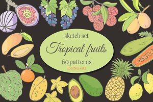 Sketch of tropical fruits.