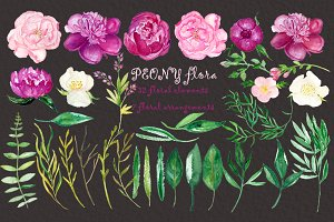 Peony flora clipart watercolor.