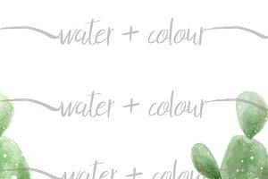 watercolor succulent border