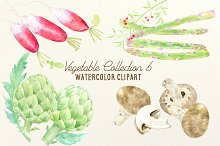 Watercolor Vegetable Collection 6