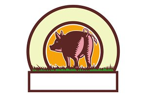 Pig Tail Rear Circle Woodcut