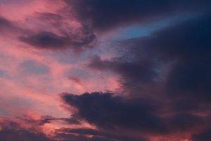 Dramatic sunset. Sky background