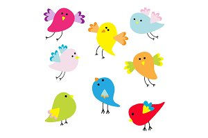 Funny bird set