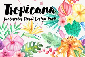Watercolor Tropical Floral Pack