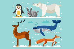 North & Arctic Animals Vector