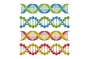 DNA Molecules Set