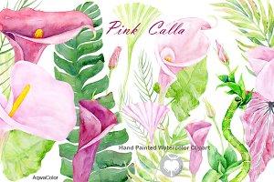 Watercolor clipart Pink Calla