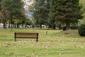Autumn in the Park Azpeitia