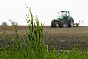 Green grass on background of working tractor