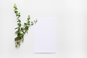 Minimal Stationery Mockup Bundle