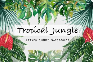 Tropical Leaves Jungle Summertime