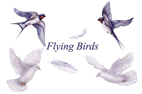 Watercolor Flying Birds