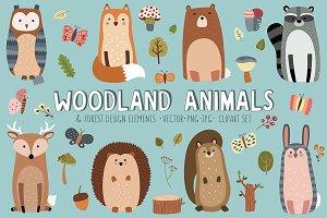 Woodland Animals & Design Elements