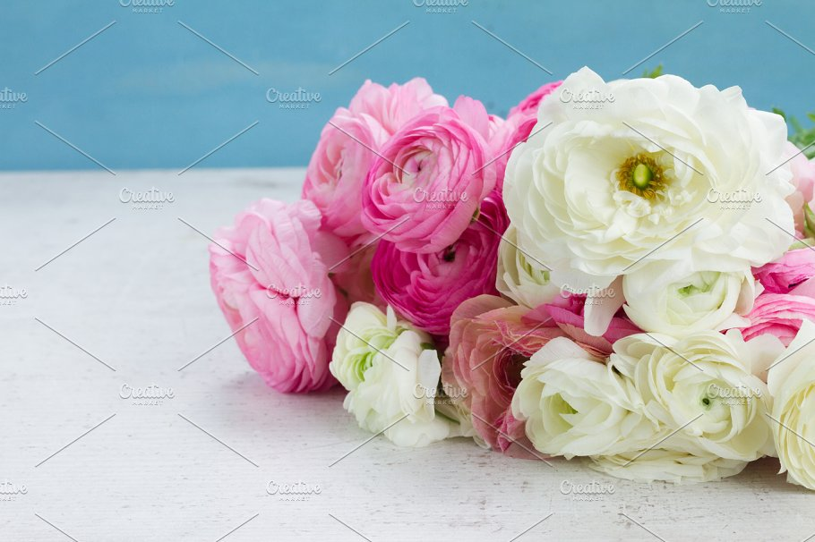 Pink and white ranunculus flowers nature photos creative market pro pink and white ranunculus flowers mightylinksfo