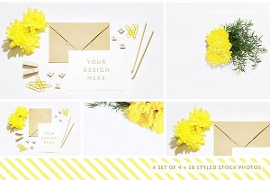 Styled Stock Photography Pack - 10