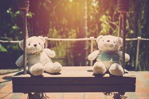 Couple teddy bear sit in swing