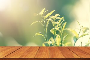 Wood table top on blur leaf