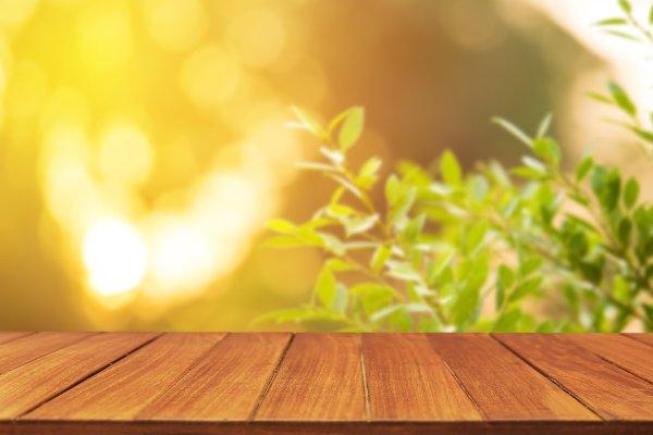 Wood table top on blur leaf