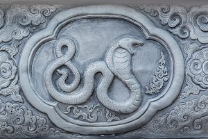 Chinese Zodiac Signs of Snake