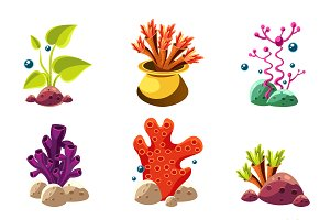 Underwater plants and creatures