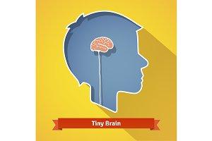 Tiny small brain