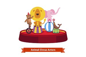 Playing circus animals show