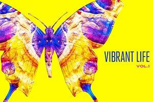 Vibrant Life, Vol. 1