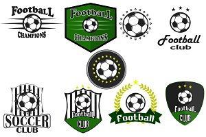Professional sports logo football