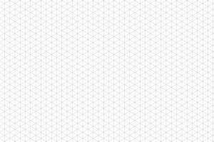 Gray isometric grid on white
