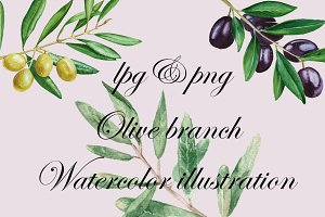 Olive branch watercolor illustration