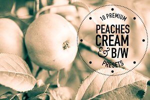 Peaches, Cream, BW Lightroom Presets