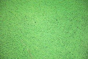 Grainy Green