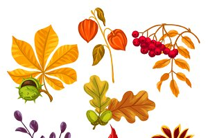 Set of stylized autumn leaves.