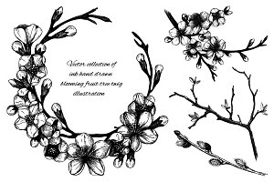 Ink hand drawn blooming twig sketch