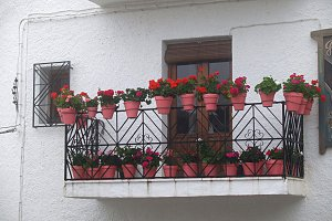 balcony with pots on fog