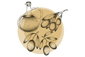 Olive oil hand drawn design elements