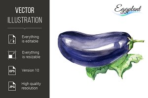 Watercolor eggplant