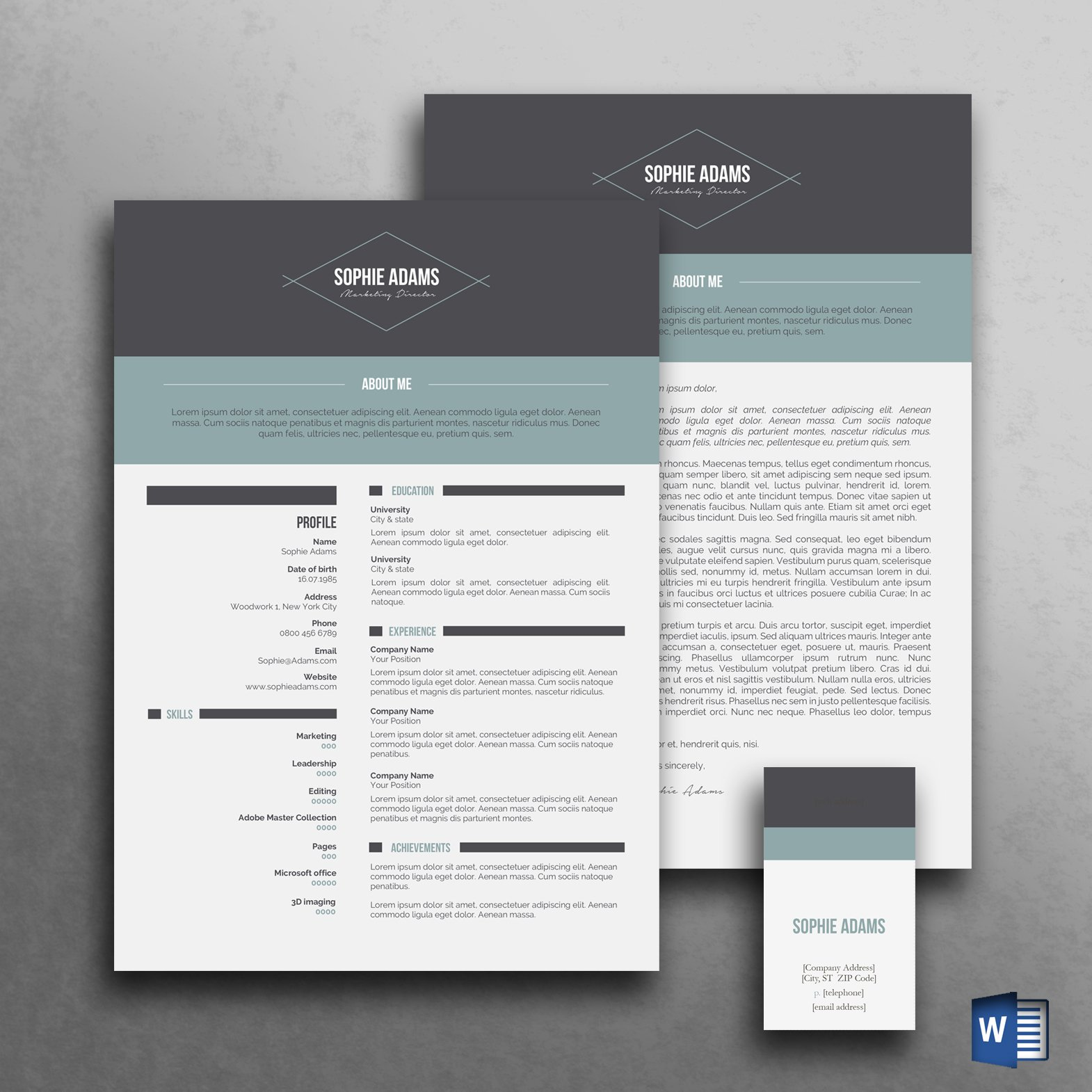 modern resume template cv template resume templates creative market - Modern Resumes