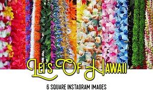 LEI'S OF HAWAII {Instagram stock}