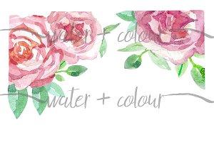 watercolor roses border