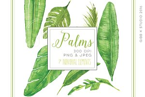 Palm Leaves Watercolor Clipart