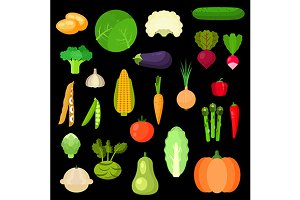 Healthful vegetables flat icons