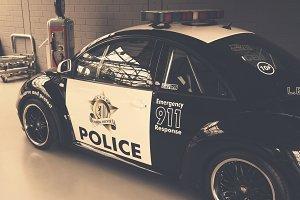 Beetle police