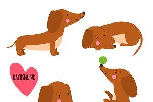 Cute dachshund set
