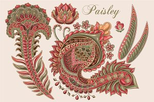 Vector Paisley Elements