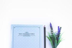Hero Image.Lavender.Feminine Blogger